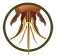 appareil buccal abeille